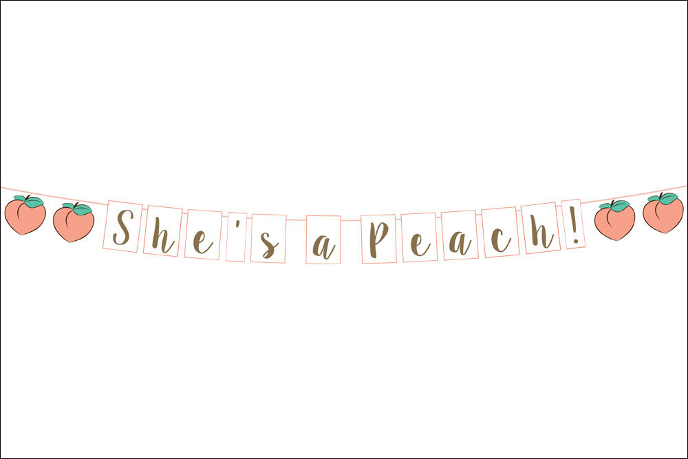 Digital mock-up of custom peach garland
